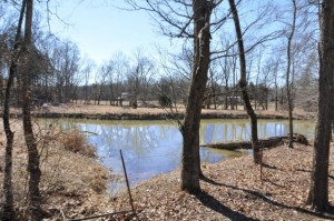Pond on Tract 3