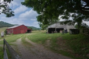 View of Barn 4