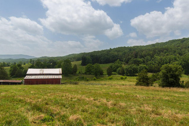 SOLD – Absolute Auction – 80.089 Acres Subdivided Into 12 Tracts & Farm Equipment