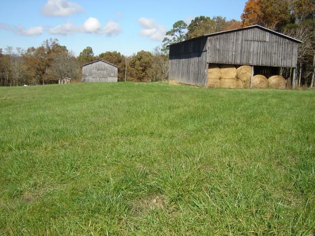SOLD – Absolute Auction – Approx. 80 Beautiful Acres with House, Barns, Pond