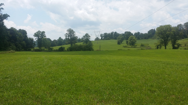SOLD – Absolute Auction – 21 Beautiful Acres in Dutch Valley Area of Anderson County