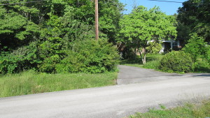 433 Shady Lane 05