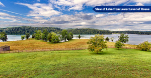 View of Lake from Lower Level of House