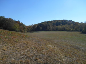 Third View of Open Pasture Land