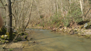 Creek on Property 2