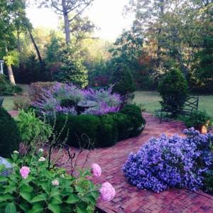 Emory_Garden Area
