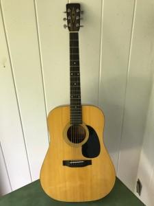 Lambeth - Alvarez Regent Acoustic Guitar