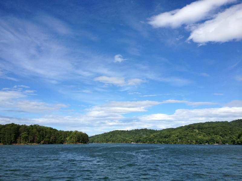 ABSOLUTE REAL ESTATE AUCTION – 2.72 Acres (Comprising 10 PUD Lots) at Norris Lake at the Willows at Twin Cove