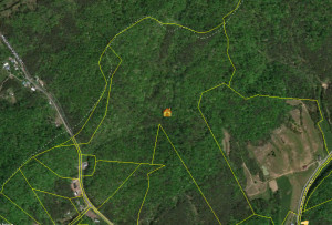 CRS Bing Property Map