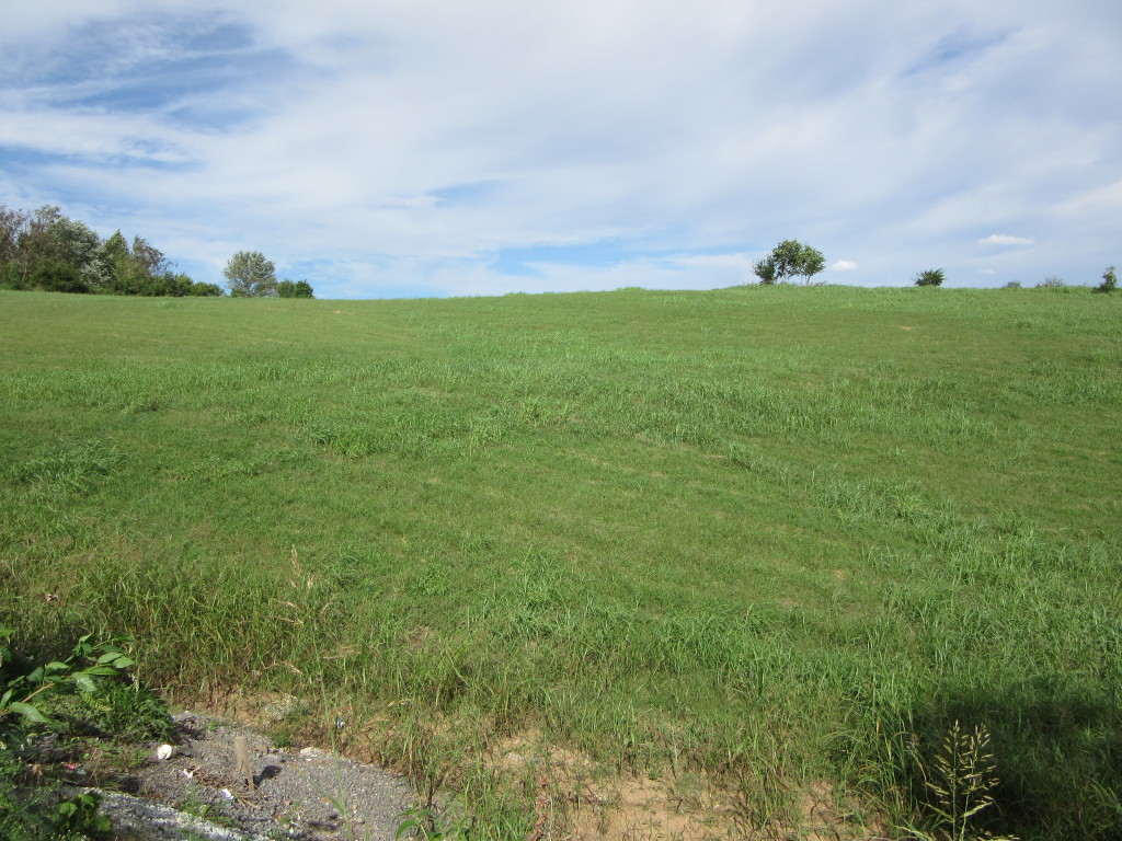 ABSOLUTE REAL ESTATE AUCTION – Approx. 10.5 Acres to be Sold in Two Tracts