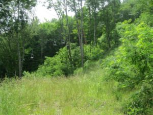 Property 16 - Lot 3B, Recombination of a Portion of Scenic Wolf Mountain Resort Phase VII (Spa Court) 01