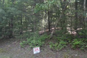 Property 2-30 Dividing Ridge 2