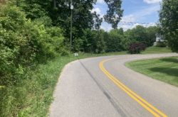 Property 21 - Lot 16 Pickens Rd 1