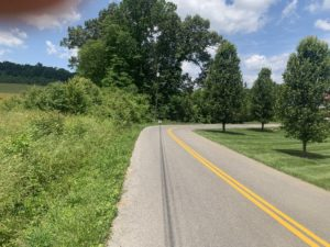 Property 21 - Lot 16 Pickens Rd 2