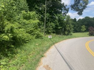 Property 21 - Lot 16 Pickens Rd 3